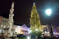 Košice 5. 12. 2016 – 23.12.2016 Christmas Tree, Holiday Decor, Home Decor, Teal Christmas Tree, Decoration Home, Room Decor, Xmas Trees, Christmas Trees, Home Interior Design