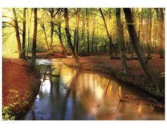 "Fototapete Wald Fluss Baum ""FAIRYTALE AUTUMN"" 400x280 cm"
