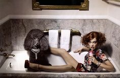 It isn't weird for a poodle to appear in a bath tub in fashion editorials.