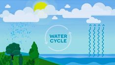 What is the water cycle definition? What are the water cycle steps? Teach your children in and grade with this educational water cycle video. Science Videos For Kids, Easy Science, Weird Science, Science Experiments Kids, Lessons For Kids, Science Lessons, Sound Science, Plant Science, Science Fair