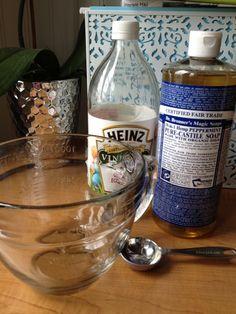 2 cups warm water 1 Tablespoon vinegar 1 Tablespoon castille soap