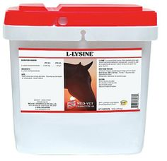 L-Lysine - 10 lb (450-750 days) by Med-Vet Pharmaceuticals. $57.25. A highly concentrated source of this essential amino acid. Lysine deficiencies can result in poor growth and development of young horses and poor overall health of adult horses. Weanling/Yearling feed 3 gm daily, Adult/Broodmares feed 7 gm daily, Working/Performance 10 gm. 6 gram scoop included.