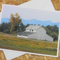Barn and Goldenrod Photo Note Card - Rural Nature Photography Montana - myMountainStudio