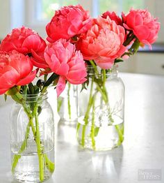 Whether you grow them or pick them up at a florists shop, fresh flowers are such a treat that you want them to last as long as possible. Follow these tips to keep cut flowers as fresh as a daisy./