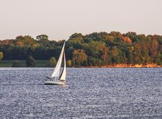 Wind Tilted Sailing On Percy Priest Lake