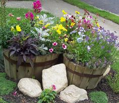 This would be a great idea for a filler in my front bed until I can get enough perennials to fill it up!!!  I must contain the weeds!!!