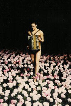 accordions.  image: Pina Bausch