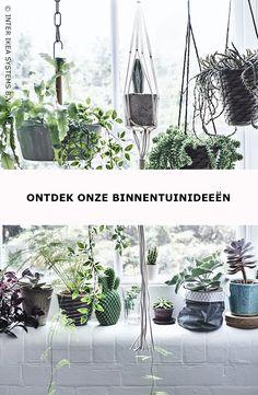 Geen buitenruimte? Maak een raamtuin! Combineer allerlei vorman, maten en kleuren van bladeren en potten en creëer een etalage voor de natuur. Ontdek onze ideeën om het hele jaar door van je binnentuin te genieten. BITTERGURKA Plantenhanger, 9,99/st. #IKEABE #IKEAidee  Grow a window garden! Mix all shapes, sizes and colors of leaves and pots en create a window full of nature. Discover our ideas for an all-year-round indoor garden. BITTERGURKA Hanging planter, 9,99/pce. #IKEABE #IKEAidea