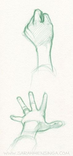 hands. Sarah Mensinga ✤ || CHARACTER DESIGN REFERENCES |: