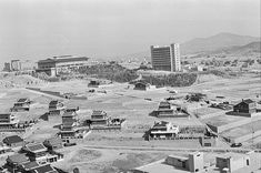 Old Pictures, Old Photos, Vintage Photos, Time In Korea, Asian Tigers, Korean Photo, Fire Heart, Korean Traditional, Seoul Korea