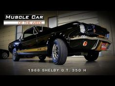 1966 FORD MUSTANG SHELBY GT350H - AMERICAN MUSCLE CAR WITH A SPECIAL STORY   HOT CARS