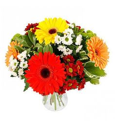 A colourful mixed arrangement of striking yellow, orange and red gerberas and pretty white, green and burgundy chrysanthemums, making a heart-warming gift for any occasion.