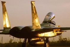 AWESOME F-15 - GOLDEN