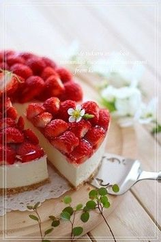 Genuine Strawberry No-Bake Cheesecake Strawberry Desserts, Strawberry Cheesecake, Japanese Sweets, Japanese Cake, Sweets Recipes, Food And Drink, Yummy Food, Snacks, Gastronomia