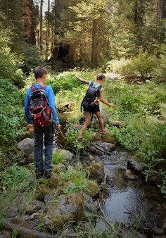"""""""Unless we are willing to encourage our children to reconnect and appreciate the natural world, we can't expect them to help protect and care for it."""" - David Suzuki"""
