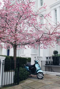 A Photo Diary: Notting Hill, London