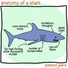 SHARK WEEK! Yup this definitely explains my irrational fear of sharks even though I'm from ND and river monsters doesn't help the situation