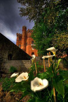 Castello di Brolio, Tuscany, where Barone Bennito Ricasoli lived and perfected Chianti wine