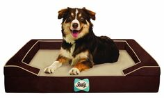 Sealy Lux Quad Layer Orthopedic Dog Bed with Cooling Gel Autumn Brown Medium