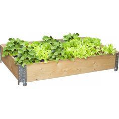 Kasvilaatikko 120 x 80 cm luonnollinen lavakaulus pieni puutarha vihannesten kasvatus laatikossa muista etanakaulus 10 e