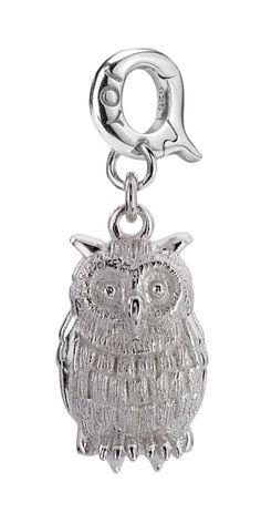 Joy de la Luz | Owl