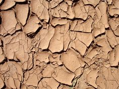 Texture....cracked red clay