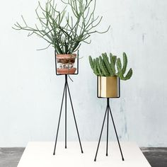 Pitchfork Plant Stand