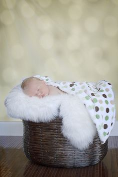 newborn photo shoot by basimmons