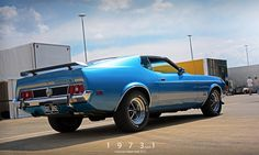 Starring: Ford Mustang Mach 1 (by Motorsport in Pictures) 1971 Ford Mustang, Mustang Mach 1, Ford Mustang Fastback, Car Ford, Ford Mustangs, Shelby Gt500, My Dream Car, Dream Cars, Detroit Steel