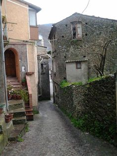 Plants and greenery, even amidst the stone back streets of Conflenti, Calabria Italy.