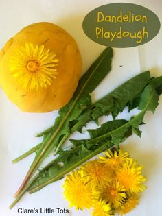 Dandelion playdough. Fun nature based invitation to play. Great spring or summer sensory play idea for toddlers and preschoolers.