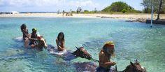 Туризм Ямайки http://travel247.ru/country/america/yamajka/1119-turizm-yamajki