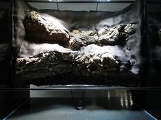 Cork bark and Hygrolon - very cool step by step construction of a vivarium