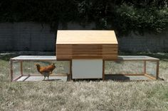 Architect Peter Strzebniok of nottoscale is developing a modular coop, or Moop, for the design-minded urban chicken.
