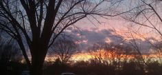 Looking out my living room window at sunset.