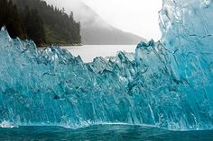 Icebergs calved off Sawyer glaciers, Tracy Arm fjord, Juneau, Alaska