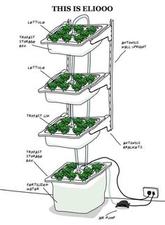 How to Build Indoor Hydroponic Gardens Using IKEA Storage Boxes. Hydroponics (growing plants in water instead of soil) uses less water than traditional soil systems, requires little space, and makes growing easy. Hydroponic Farming, Hydroponic Growing, Hydroponics System, Aquaponics Diy, Indoor Hydroponic Gardening, Aquaponics Greenhouse, Vertical Hydroponics, Container Gardening, Gardening Tips