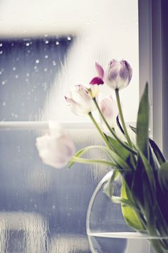 Although April showers may come your way, they bring the flowers that bloom in May <3