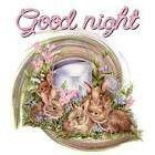 Gud night