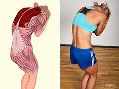 Kendinizi mükemmel hissettirecek 17 kas esnetme hareketi 17 muscle stretching exercises that will make you feel perfect Yoga Fitness, Wellness Fitness, Muscle Fitness, Fitness Workouts, Fun Workouts, Muscle Stretches, Stretching Exercises, Pilates Training, Pilates Workout