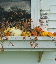 Autumn Window Box with a hint of ChiPPy-WHiTe Architectural SaLVaGe in the Background!*!*!