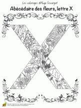 abecedaire belles fleurs a lettre x