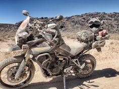 Very dusty Triumph Tiger