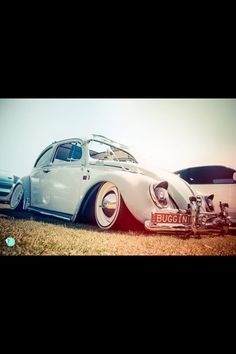 volkswagen. This...oh my gosh...this! :D
