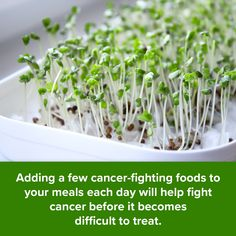 #cancer #prevention #eattodefeatcancer #cancerfightingfoods