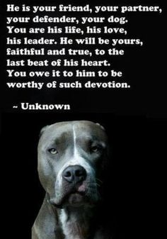 Treat your pets the way they deserve to be treated. They are the most loyal creatures on the planet.