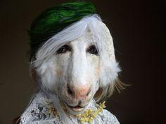 Sweetest Thing Paper mache goat mask goat costume by MiesmesaBerni Mask Cat, Lion Mask, Animal Head Masks, Animal Heads, Mascaras Halloween, Halloween Masks, Sheep Mask, Paper Mache Paste, Goat Mask