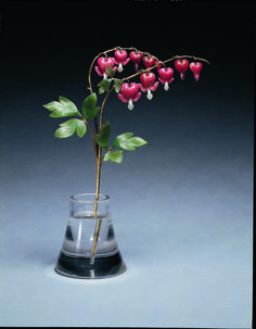 Queen Mary acquired this Fabergé flower study of a bleeding heart in 1934. The nephrite leaves are carved to show the characteristic shape and veins of the plant and the bell-shaped flowers are made of carved and polished rhodonite with quartzite stamens. To ensure that the flower is as true to nature as possible, the flowers are suspended from gold stems, articulated en tremblant so that they can move gently, as if blown by the wind.