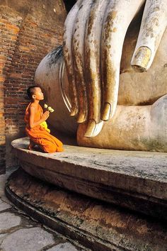 Permalink imagine încorporat Bangkok, People Around The World, Around The Worlds, Art Zen, Ayutthaya Thailand, Little Buddha, Buddhist Monk, Buddhist Quotes, Buddha Art