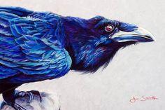 Kolanu (raven) Signed Giclee Fine Art Print by Jen Starwalt Soft Pastel Art, Pastel Drawing, Soft Pastels, Contemporary Artwork, Animals Images, Illustrations, Native Art, Chalk Art, Wildlife Art